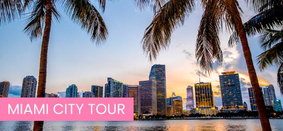 banner miami city tour