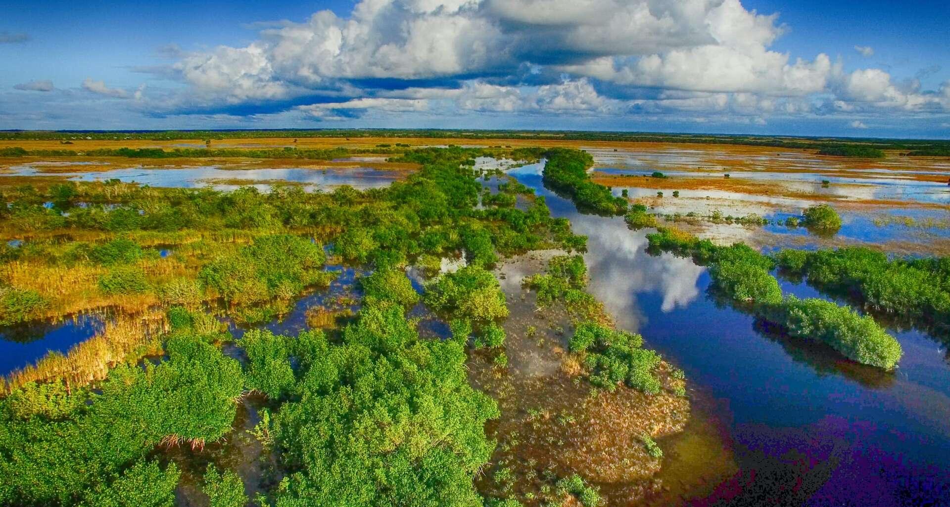 La storia del parco nazionale delle Everglades